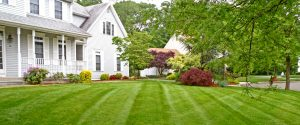 Contact Texas Lawn Sprinklers