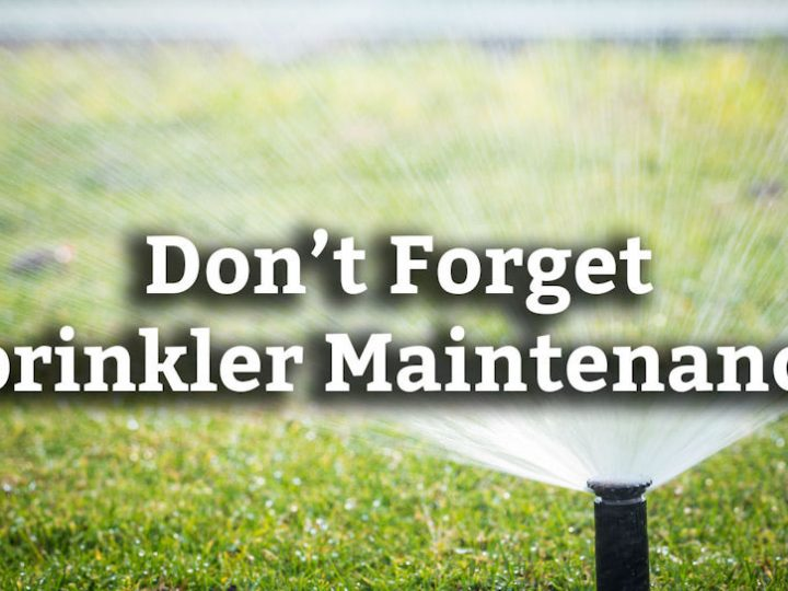 The Importance of a Spring Checkup for Your Sprinkler System