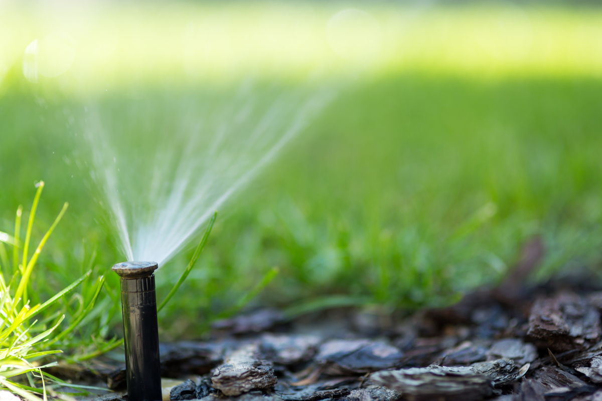 What You Need To Know About Lawn Irrigation Backflow Devices