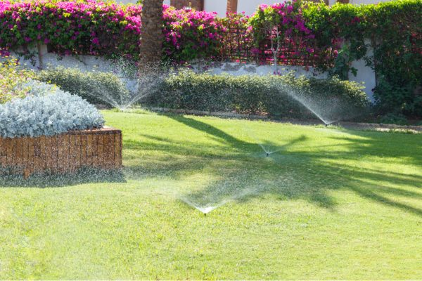 Signs That You Are Overwatering Your Home's Lawn