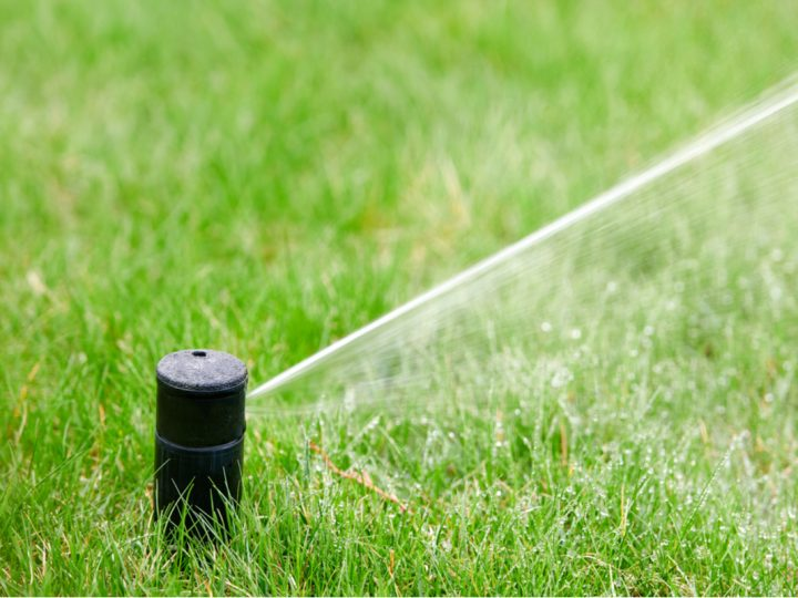 The Most Common Reasons You May Need to Replace Your Sprinkler Heads
